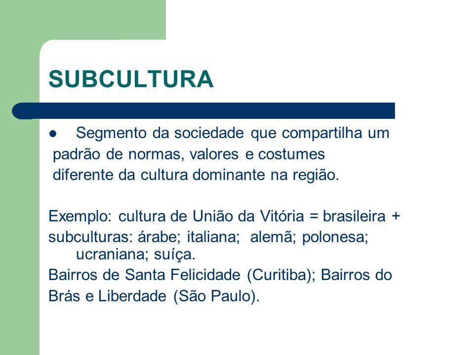 SUBCULTURA Segmento da sociedade que compartilha um padrão de normas, valores e costumes diferente da cultura dominante na região. Exemplo: cultura de