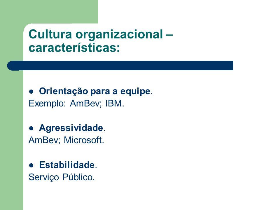 Cultura organizacional – características: Orientação para a equipe. Exemplo: AmBev; IBM. Agressividade. AmBev; Microsoft. Estabilidade. Serviço Públic