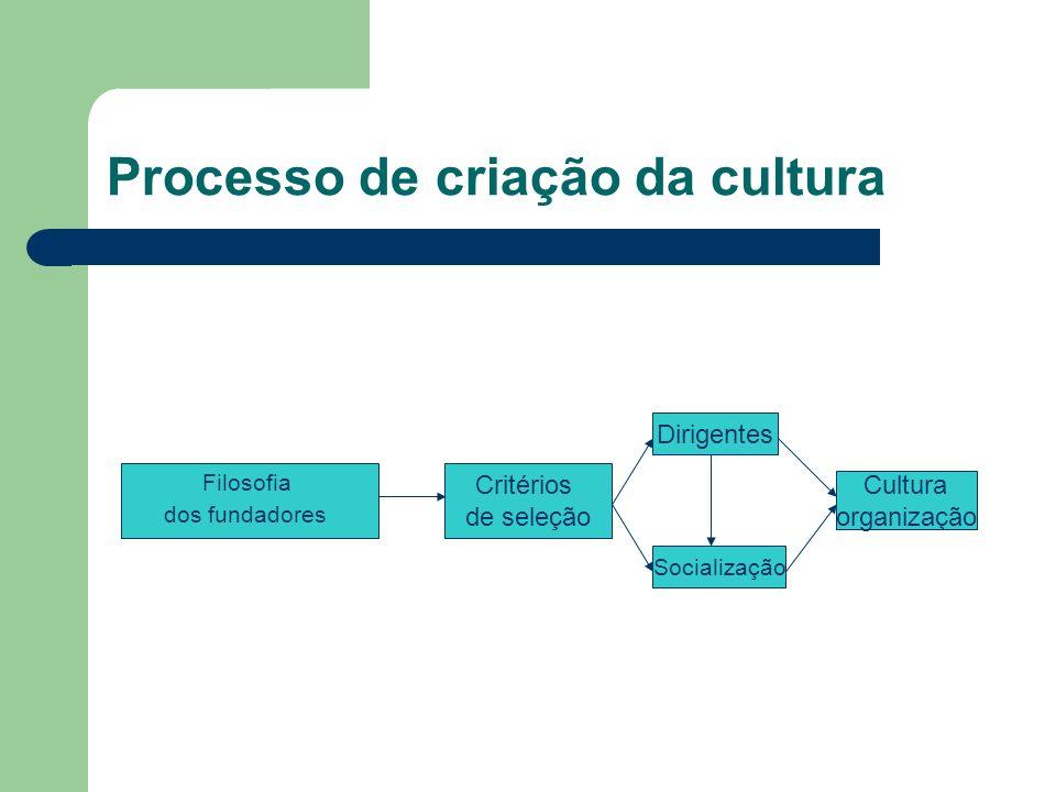 Processo de criação da cultura Filosofia dos fundadores Critérios de seleção Dirigentes Socialização Cultura organização