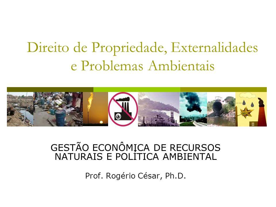 Direito de Propriedade, Externalidades e Problemas Ambientais GESTÃO ECONÔMICA DE RECURSOS NATURAIS E POLÍTICA AMBIENTAL Prof. Rogério César, Ph.D.