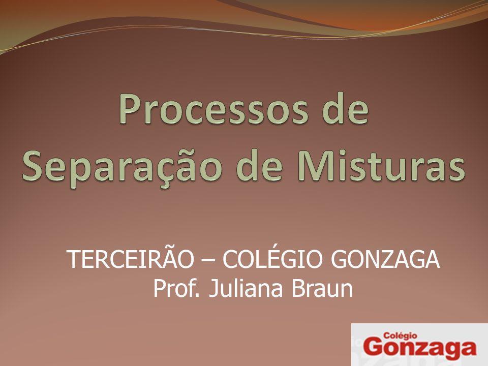 TERCEIRÃO – COLÉGIO GONZAGA Prof. Juliana Braun