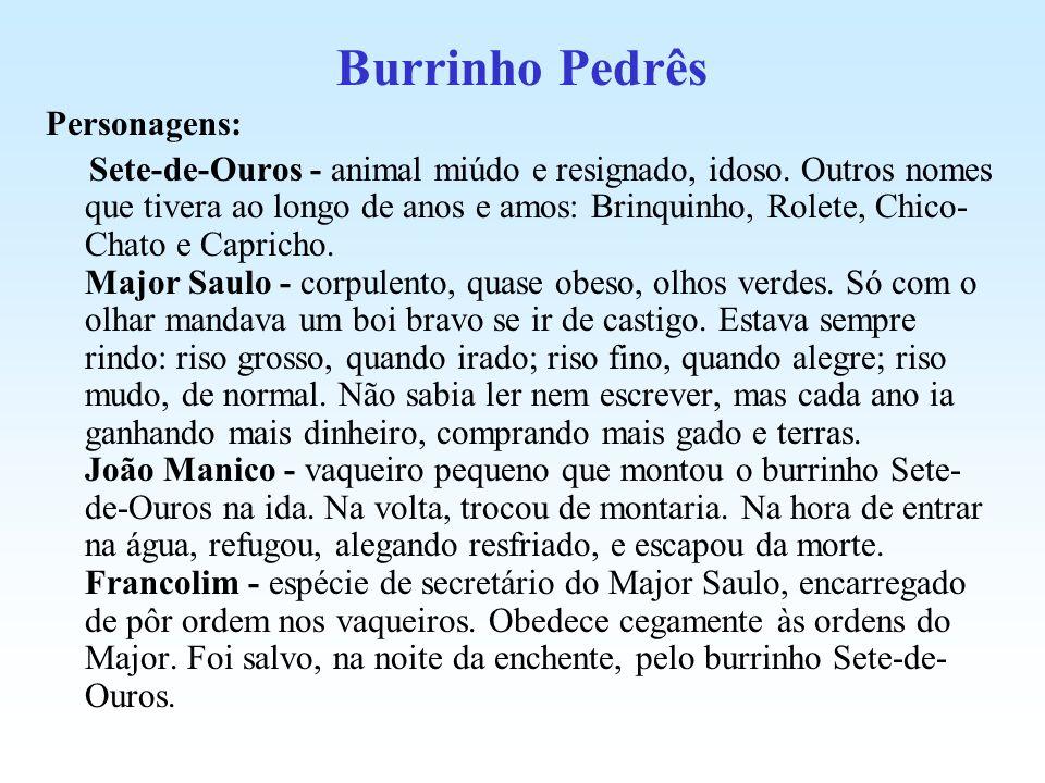 Burrinho Pedrês Personagens: Sete-de-Ouros - animal miúdo e resignado, idoso. Outros nomes que tivera ao longo de anos e amos: Brinquinho, Rolete, Chi