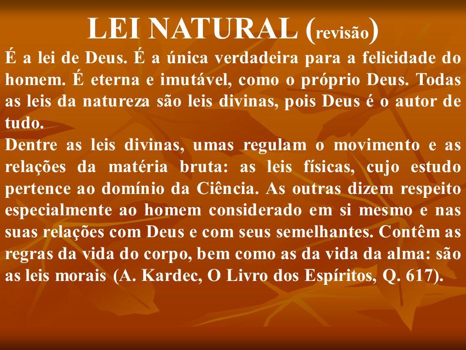LEI NATURAL ( revisão ) É a lei de Deus. É a única verdadeira para a felicidade do homem. É eterna e imutável, como o próprio Deus. Todas as leis da n