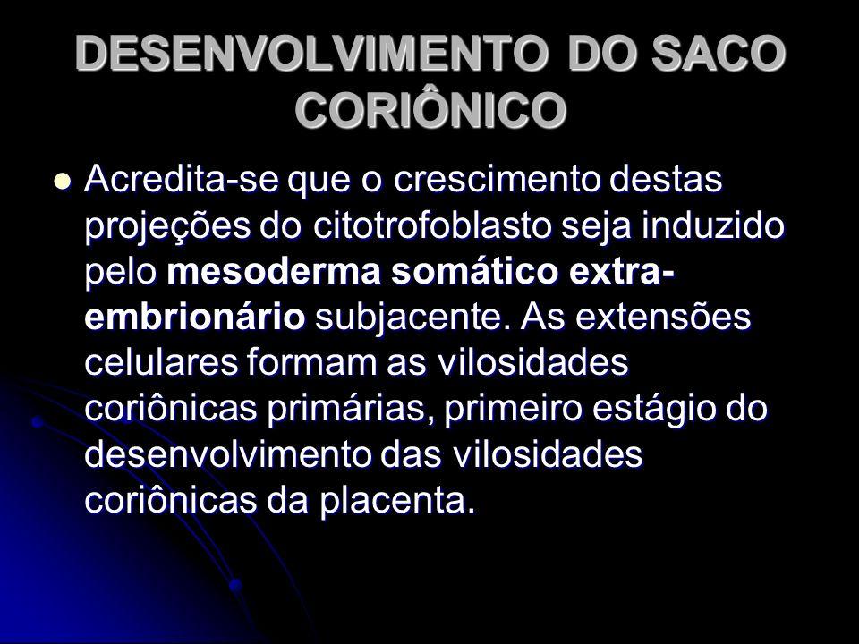 DESENVOLVIMENTO DO SACO CORIÔNICO Acredita-se que o crescimento destas projeções do citotrofoblasto seja induzido pelo mesoderma somático extra- embri