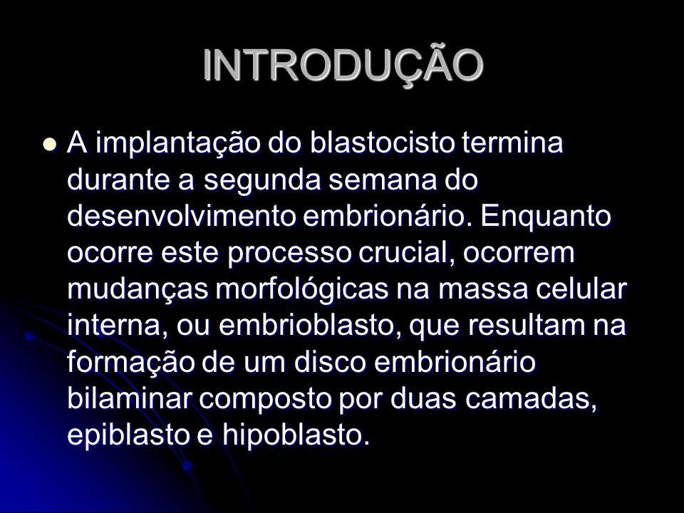 INTRODUÇÃO A implantação do blastocisto termina durante a segunda semana do desenvolvimento embrionário. Enquanto ocorre este processo crucial, ocorre