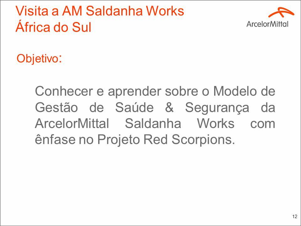11 Visita a AM Saldanha Works África do Sul Periodicidade: 06 a 10/09/2010 Grupo de visita: Miguel Ângelo Quintão Luci Amaral de Oliveira William Barb