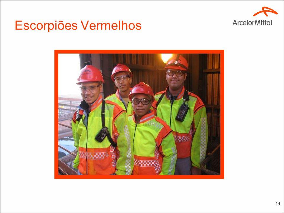 13 Visita a AM Saldanha África do Sul Objetivo: Primeiro dia (06/09/2010): Informações Gerais da AM Saldanha Works Fluxo de Produção Principais KPIs M