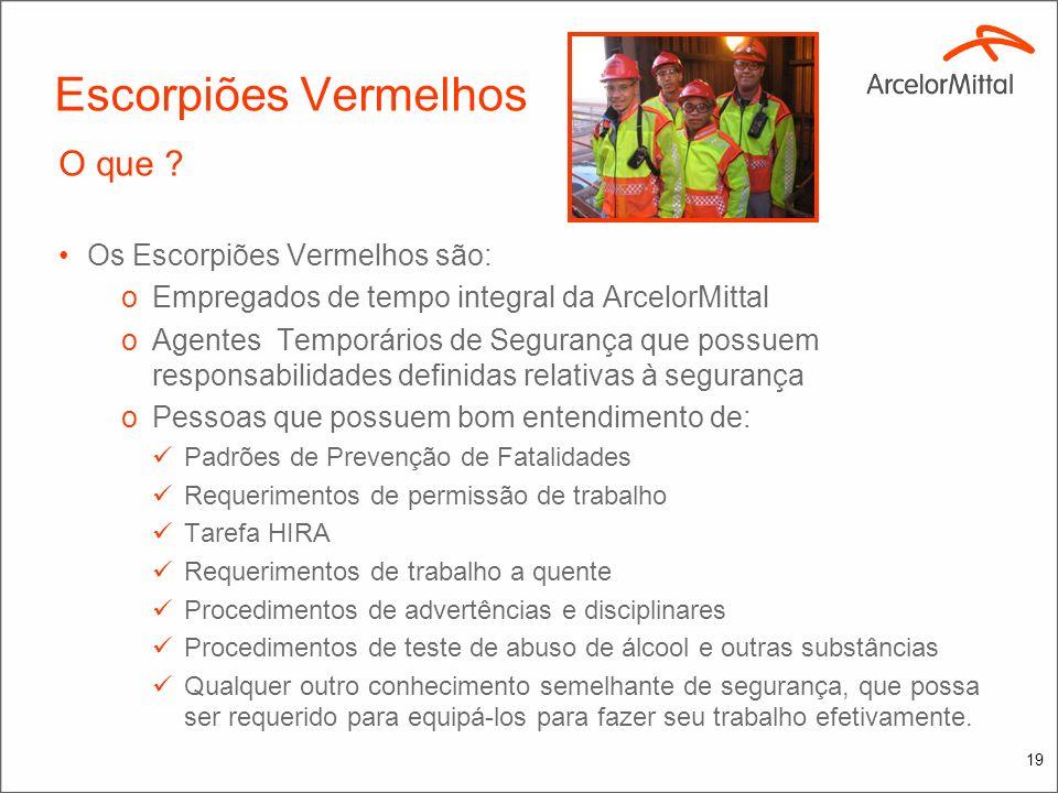 18 Escorpiões Vermelhos Em 2009: Grande parada Corex e Midrex Mais de 3000 empregados 78 dias Alto risco