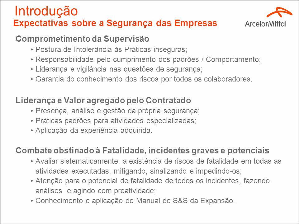 Assegurar que a implantação do projeto de expansão da ArcelorMittal Monlevade ocorra em conformidade com prazos e orçamentos previstos zelando pela Sa