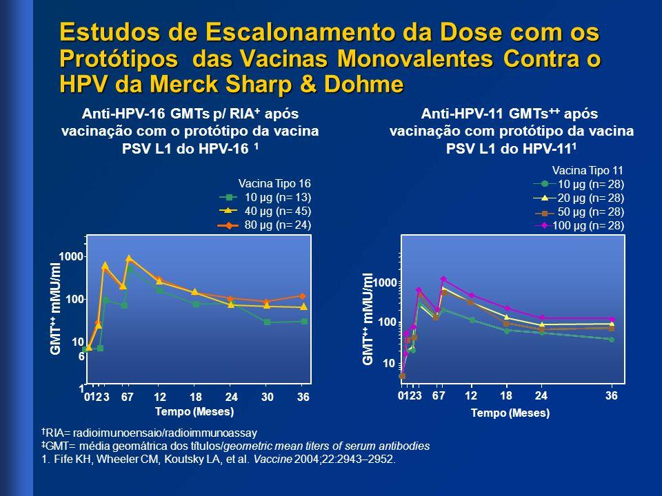 GMT ++ mMU/ml Vacina Tipo 16 10 µg (n= 13) 40 µg (n= 45) 80 µg (n= 24) Tempo (Meses) 023671218243036 1 6 10 100 1000 Vacina Tipo 11 10 µg (n= 28) 20 µ