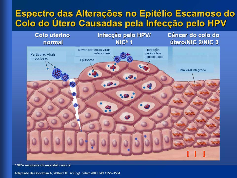 Espectro das Alterações no Epitélio Escamoso do Colo do Útero Causadas pela Infecção pelo HPV a NIC= neoplasia intra-epitelial cervical Adaptado de Go