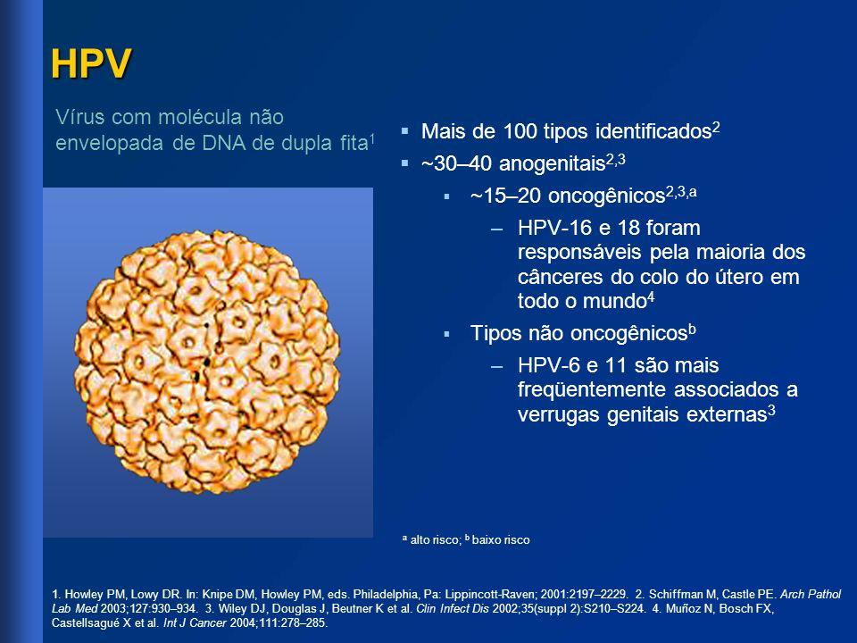 HPV Mais de 100 tipos identificados 2 ~30–40 anogenitais 2,3 ~15–20 oncogênicos 2,3,a – –HPV-16 e 18 foram responsáveis pela maioria dos cânceres do c