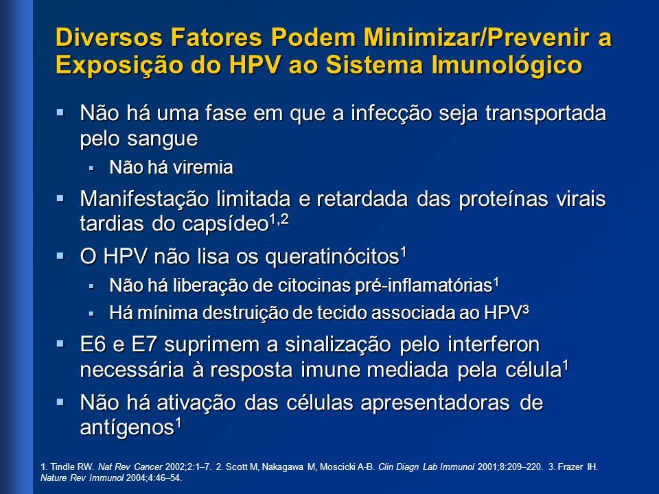 Diversos Fatores Podem Minimizar/Prevenir a Exposição do HPV ao Sistema Imunológico Não há uma fase em que a infecção seja transportada pelo sangue Nã