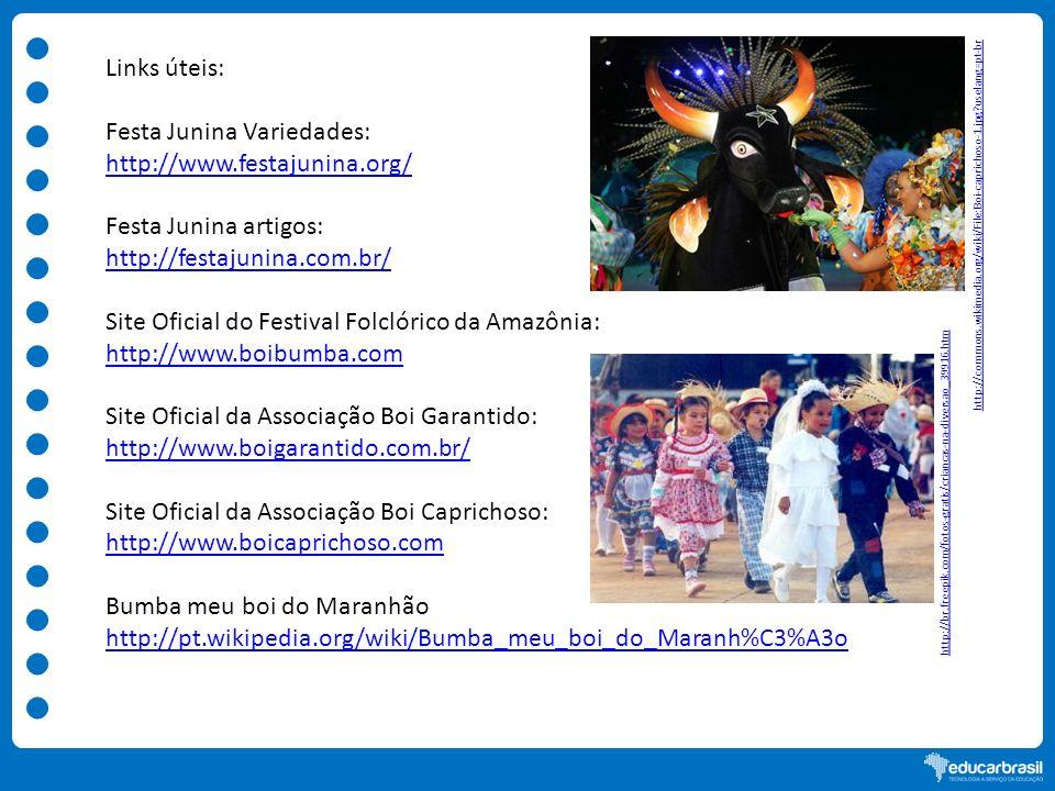 Links úteis: Festa Junina Variedades: http://www.festajunina.org/ Festa Junina artigos: http://festajunina.com.br/ Site Oficial do Festival Folclórico