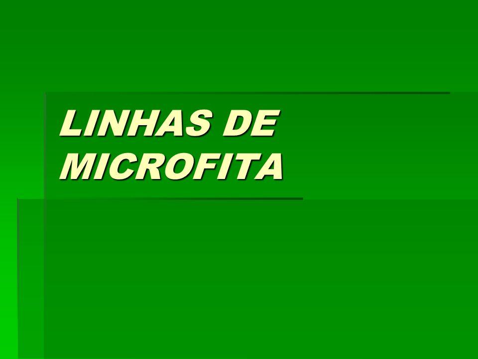 OBJETIVO APRESENTAR UMA TECNOLOGIA DE DESENVOLVIMENTO DE LINHAS DE TRANSMISSÃO EM CIRCUITO IMPRESSO DENOMINADA LINHA DE MICROFITA E AS SUAS VANTAGENS.