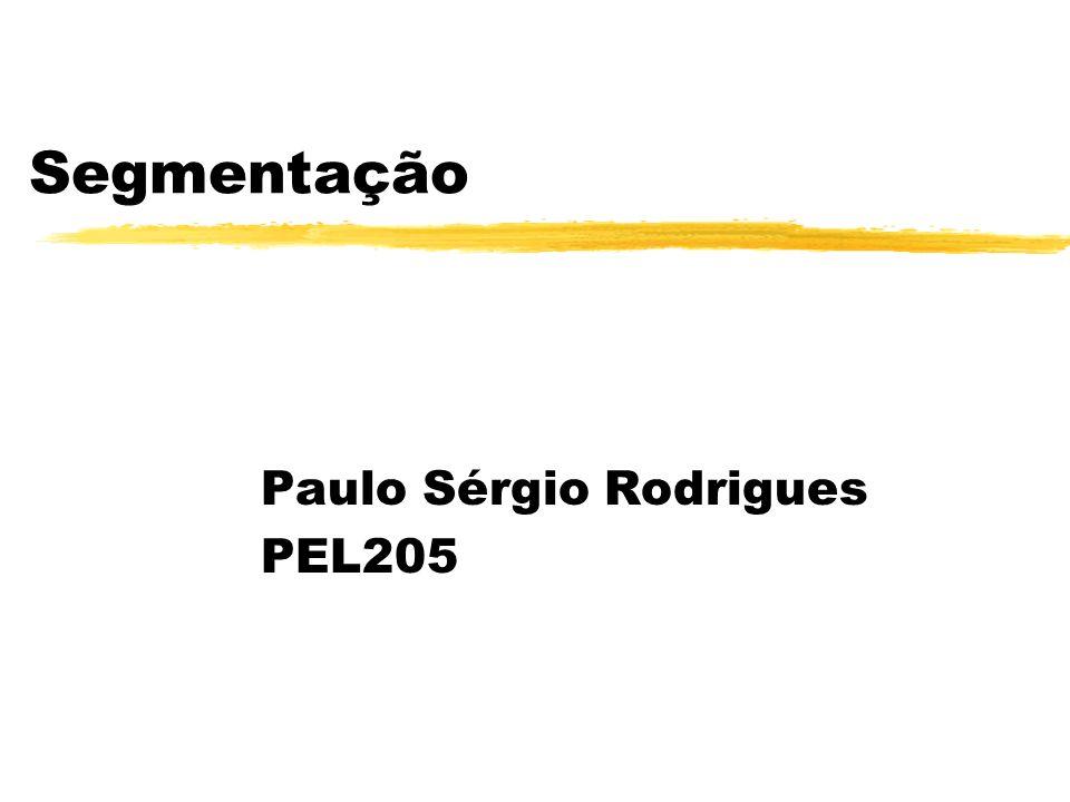 Segmentação Paulo Sérgio Rodrigues PEL205
