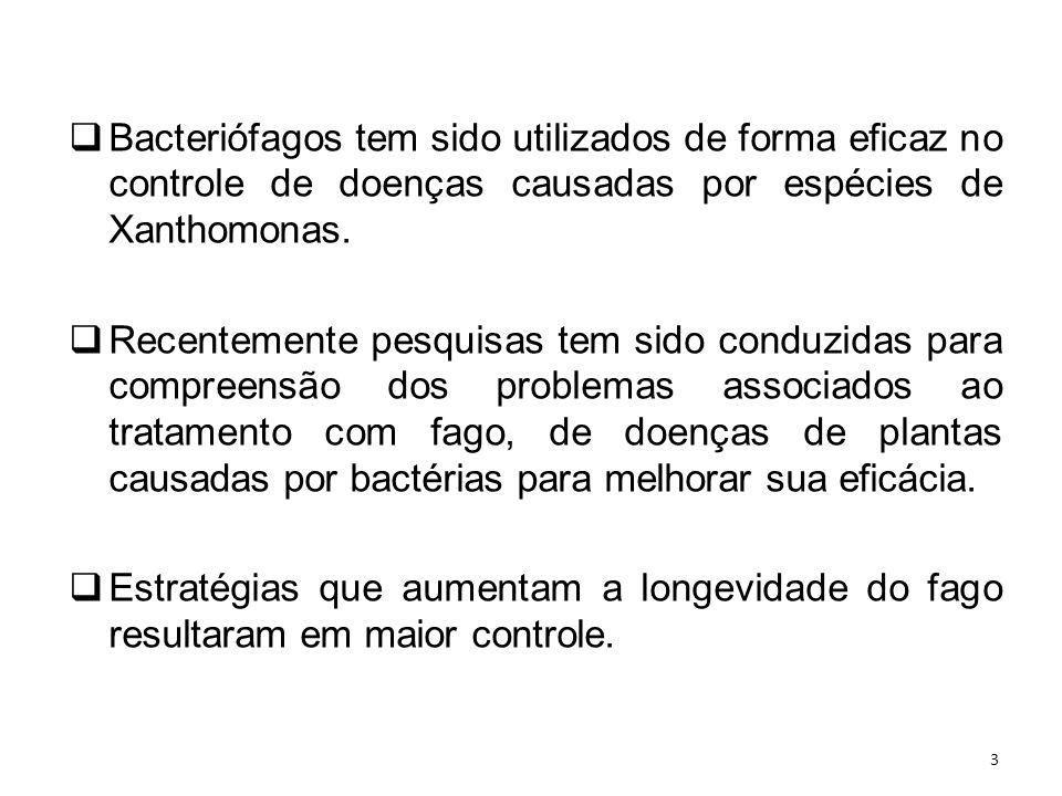 Objetivo (s) O objetivo deste trabalho foi avaliar os fagos como parte de uma estratégia de gestão integrada para o controle do ACC.