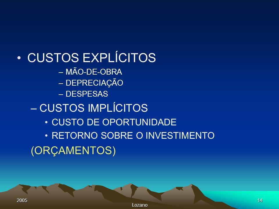 2005 Lozano 14 CUSTOS EXPLÍCITOS –MÃO-DE-OBRA –DEPRECIAÇÃO –DESPESAS –CUSTOS IMPLÍCITOS CUSTO DE OPORTUNIDADE RETORNO SOBRE O INVESTIMENTO (ORÇAMENTOS