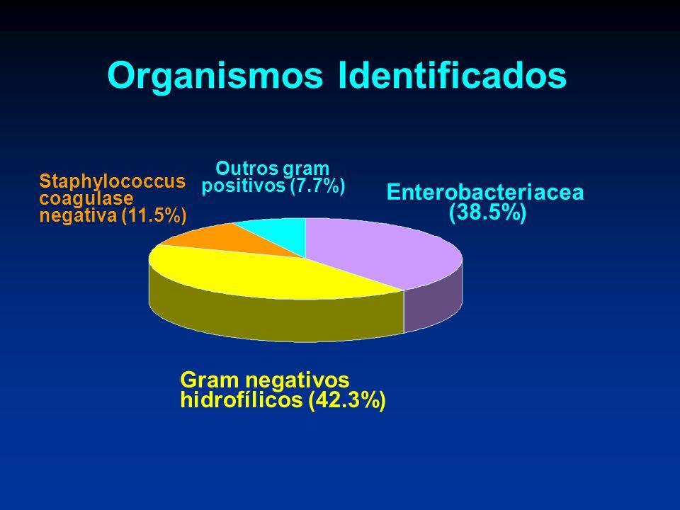 Organismos Identificados Enterobacteriacea (38.5%) Gram negativos hidrofílicos (42.3%) Staphylococcus coagulase negativa (11.5%) Outros gram positivos