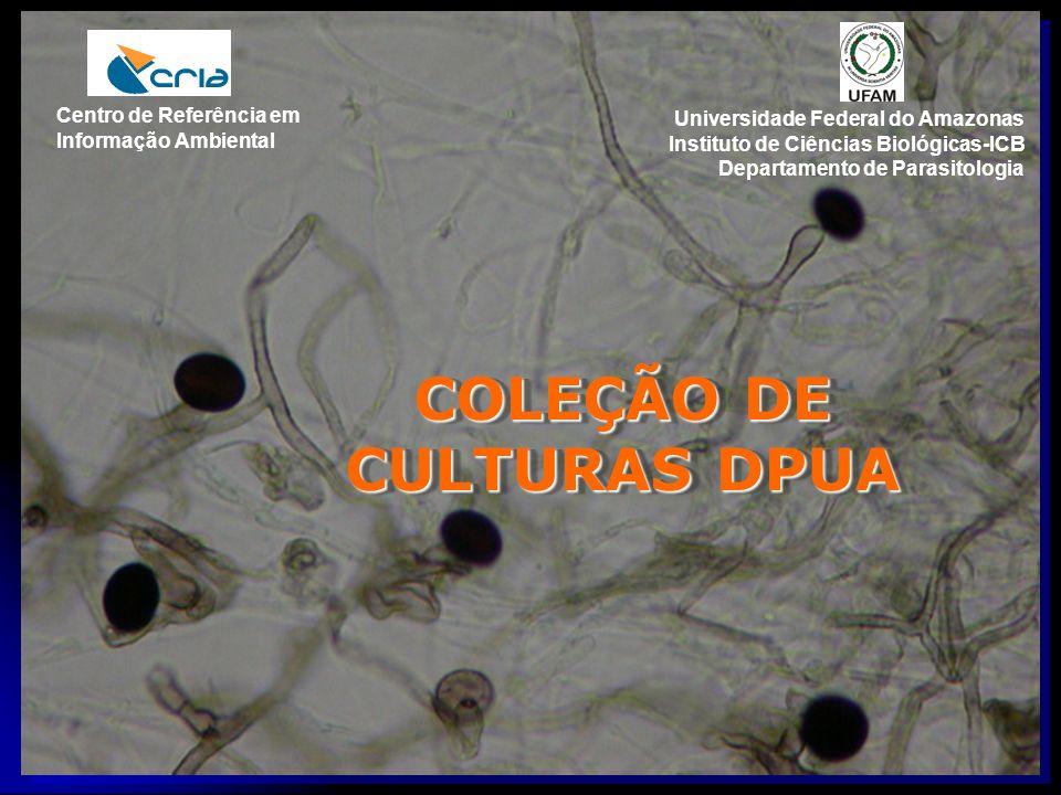 COLEÇÃO DE CULTURAS DPUA Universidade Federal do Amazonas Instituto de Ciências Biológicas-ICB Departamento de Parasitologia Centro de Referência em I