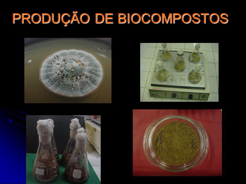 PRODUÇÃO DE BIOCOMPOSTOS