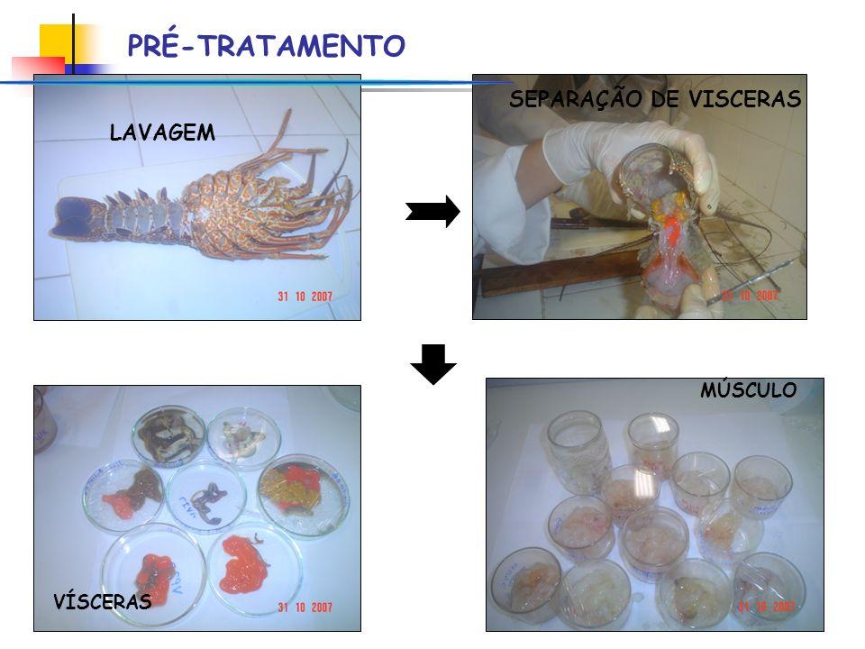 VÍSCERAS MÚSCULO PRÉ-TRATAMENTO LAVAGEM SEPARAÇÃO DE VISCERAS