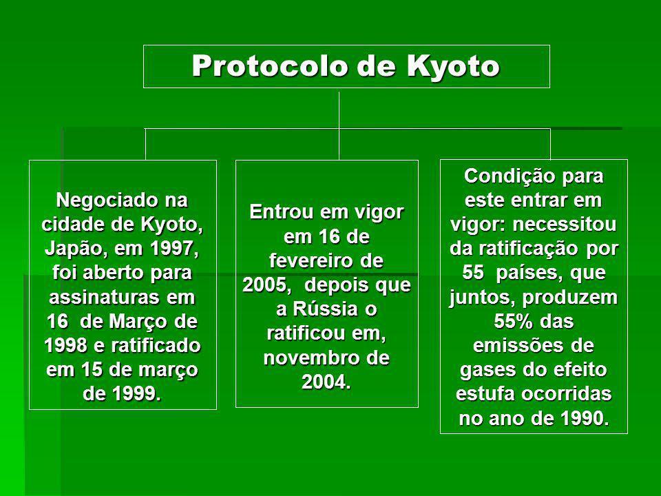 O Protocolo de Kyoto institui compromissos mais rígidos para a redução da emissão dos gases de feito estufa, os vilões do aquecimento global.
