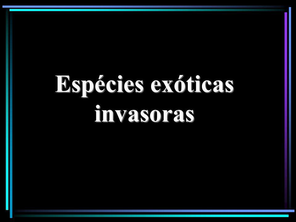 Espécies exóticas invasoras