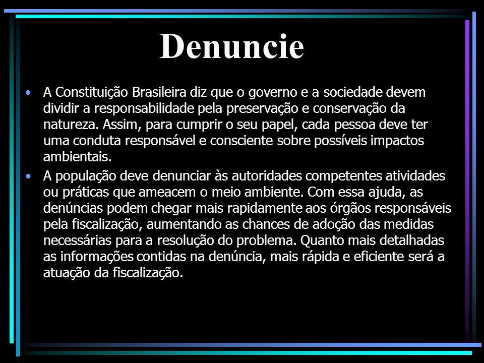 Denuncie A Constituição Brasileira diz que o governo e a sociedade devem dividir a responsabilidade pela preservação e conservação da natureza. Assim,