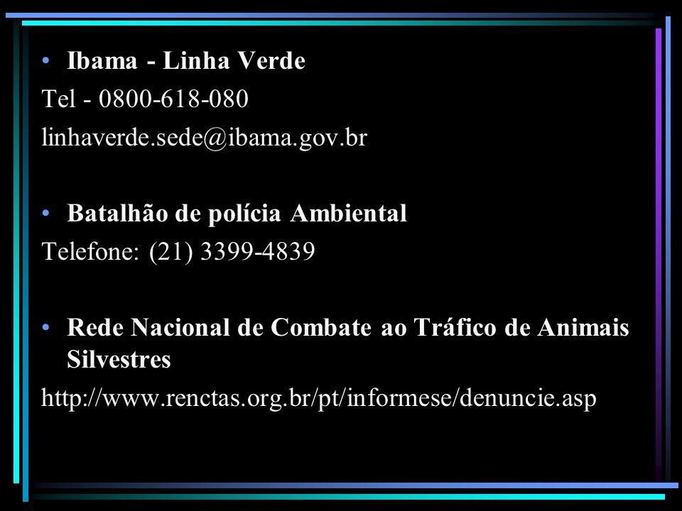 Ibama - Linha Verde Tel - 0800-618-080 linhaverde.sede@ibama.gov.br Batalhão de polícia Ambiental Telefone: (21) 3399-4839 Rede Nacional de Combate ao