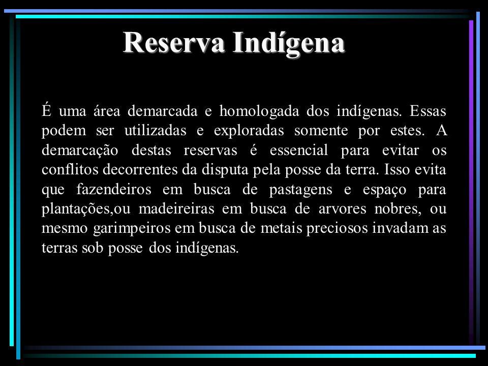 Reserva Indígena É uma área demarcada e homologada dos indígenas. Essas podem ser utilizadas e exploradas somente por estes. A demarcação destas reser