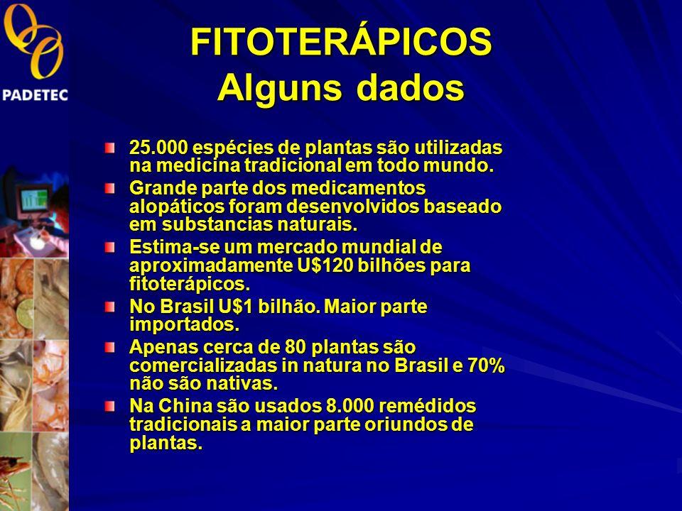 FITOTERÁPICOS Alguns dados 25.000 espécies de plantas são utilizadas na medicina tradicional em todo mundo.