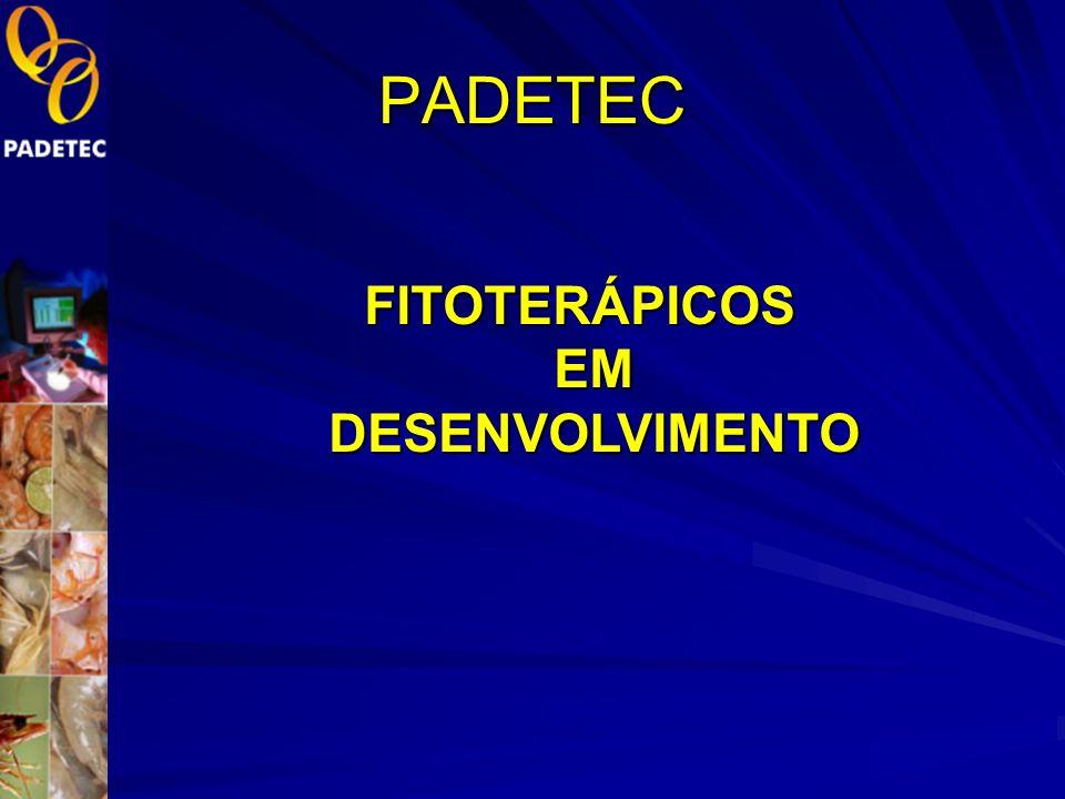 Empresas Criadas no Padetec nas áreas de fitoterápicos e produtos naturais. 2000-2010 Pronatura – Assessoria e Consultoria na área de Óleos Essenciais