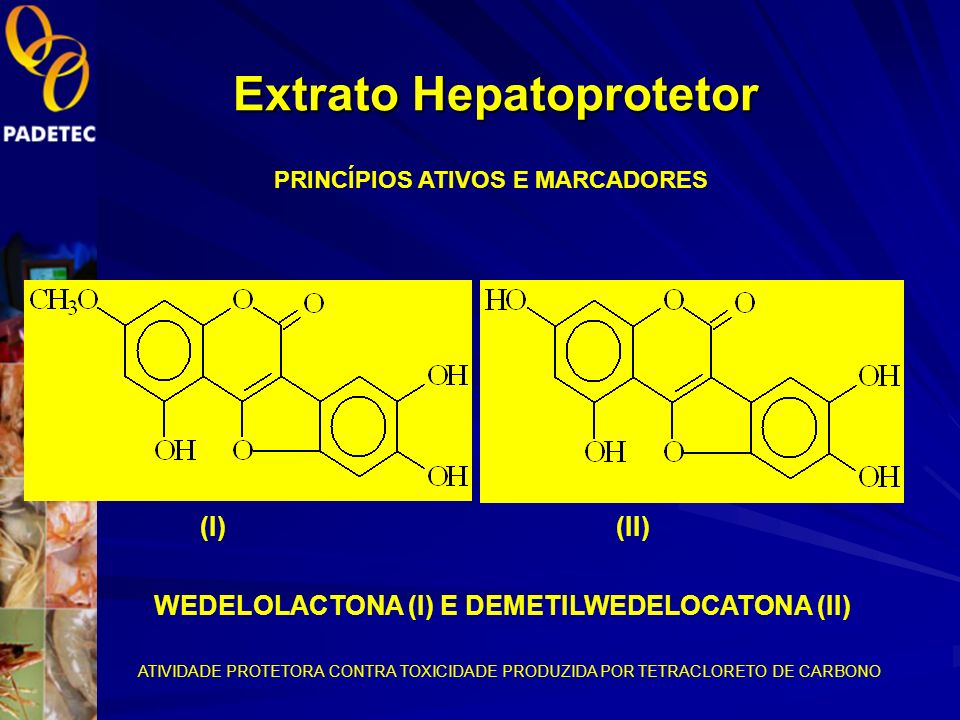 Purificação dos marcadores químicos Extrato acetato Confirmação dos marcadores por CCD Cromatografia em coluna de sílica gel(sucessivas). Wedelolacton