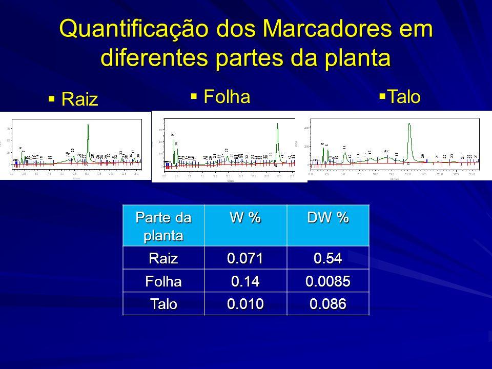 Quantificação dos marcadores Curva de calibração por CLAE. 1.4mg/mL 0.7mg/mL Wedelolactona Demetilwedelolactona