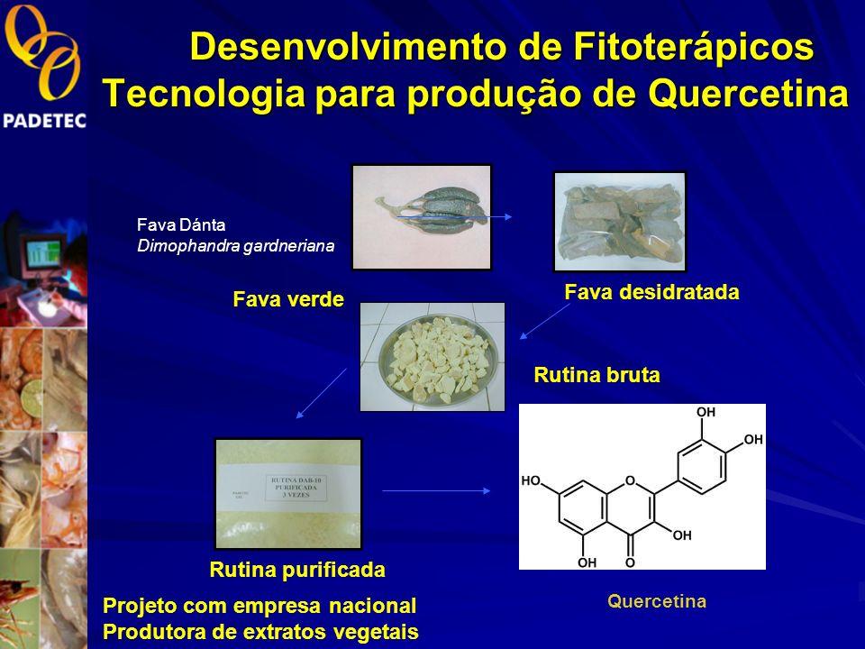 Desenvolvimento de Fitoterápicos Produção de Padrões 1.Rutina DAB 2.Rutina NSF 3.Quercetina 4.Quercetrina 5.Hesperidina Por solicitação de camara seto