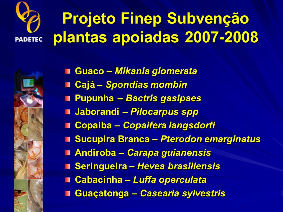 RENISUS – Relação Nacional de Plantas Medicinais de Interesse ao SUS Ampliação da lista de fitoterápicos oferecidos pelo SUS 71 Plantas com atividade