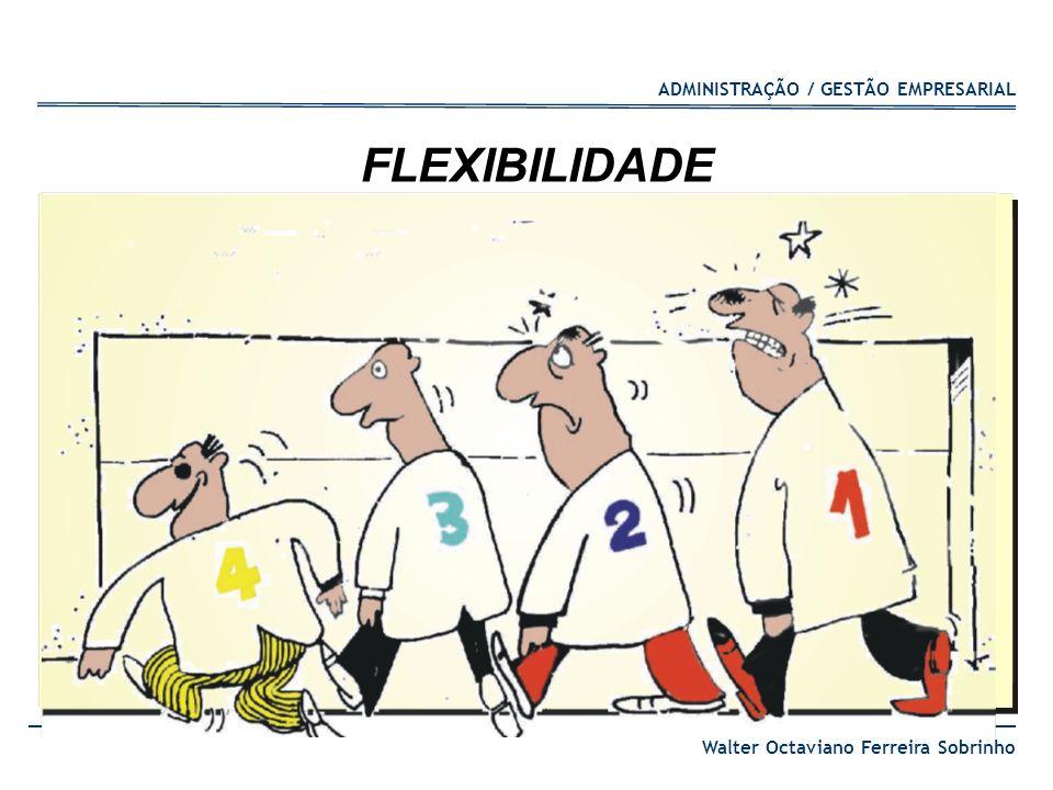 ADMINISTRAÇÃO / GESTÃO EMPRESARIAL Walter Octaviano Ferreira Sobrinho FLEXIBILIDADE