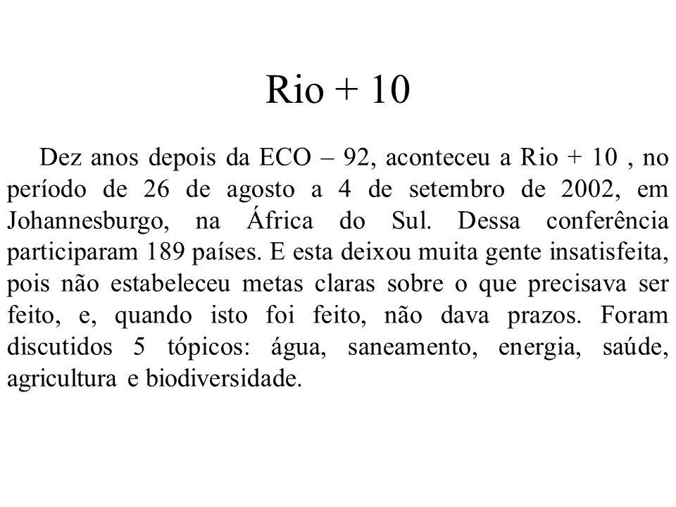 Rio + 10 Dez anos depois da ECO – 92, aconteceu a Rio + 10, no período de 26 de agosto a 4 de setembro de 2002, em Johannesburgo, na África do Sul. De