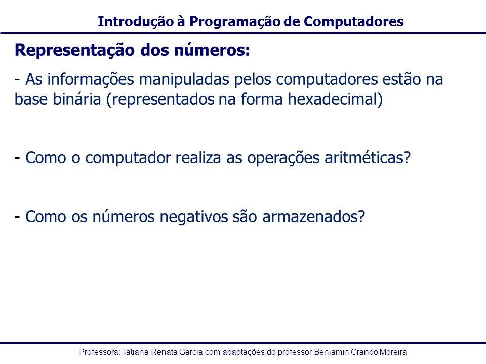 Professora: Tatiana Renata Garcia com adaptações do professor Benjamin Grando Moreira Introdução à Programação de Computadores Representação dos númer