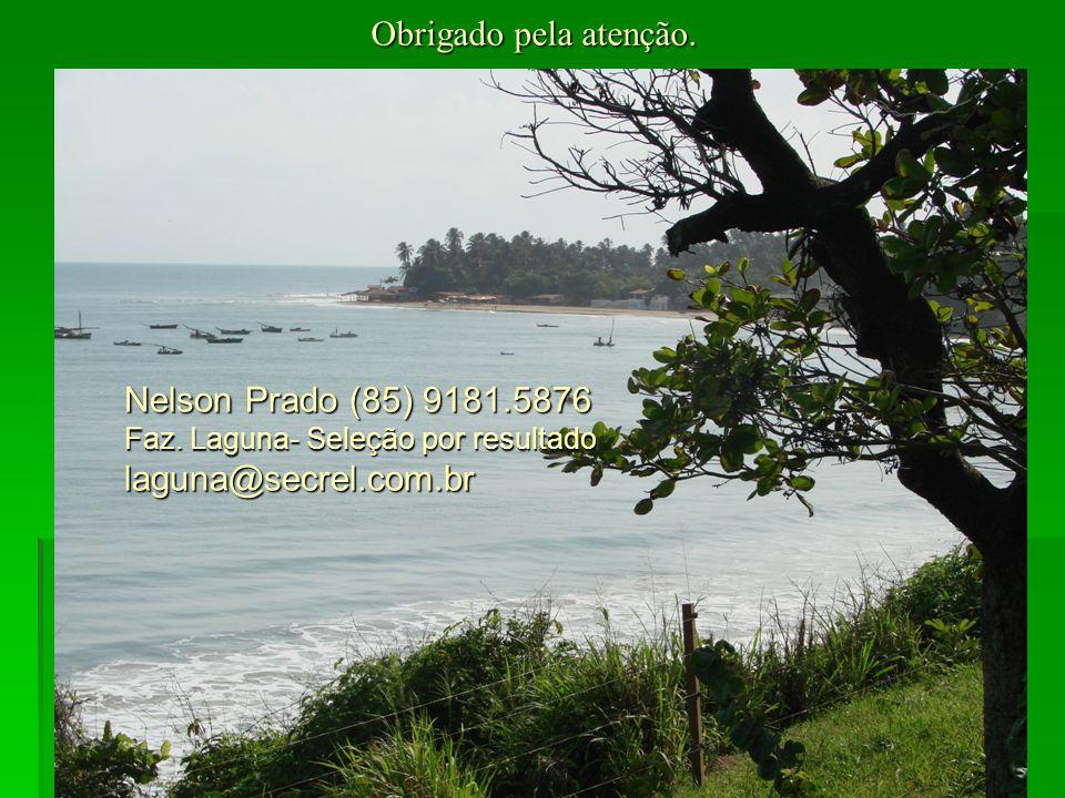 Obrigado pela atenção. Nelson Prado (85) 9181.5876 Faz.
