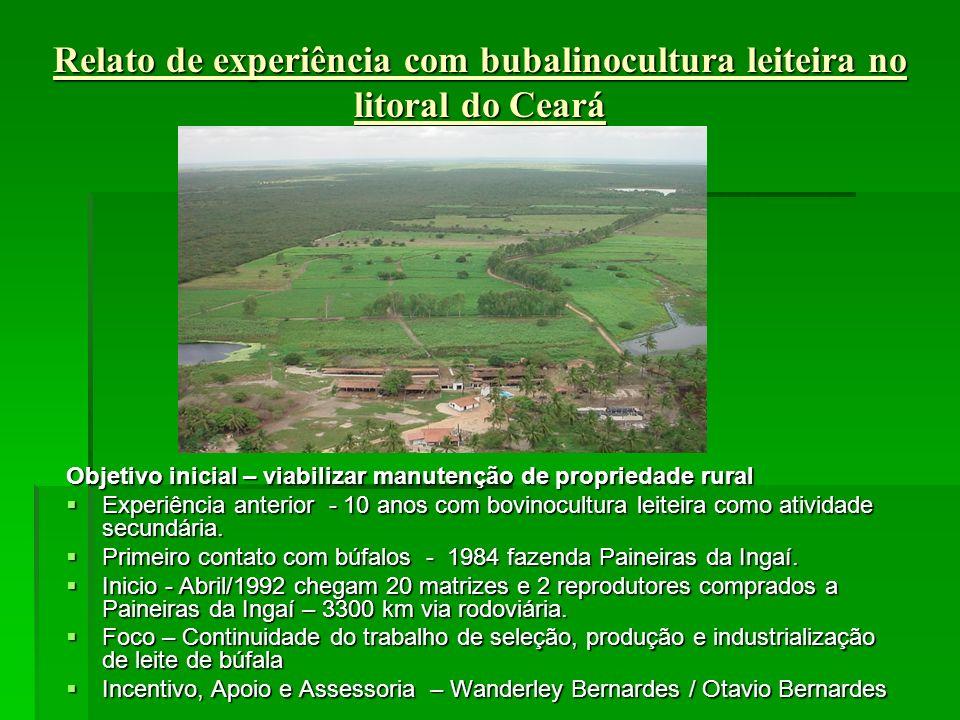 Relato de experiência com bubalinocultura leiteira no litoral do Ceará Objetivo inicial – viabilizar manutenção de propriedade rural Experiência anterior - 10 anos com bovinocultura leiteira como atividade secundária.