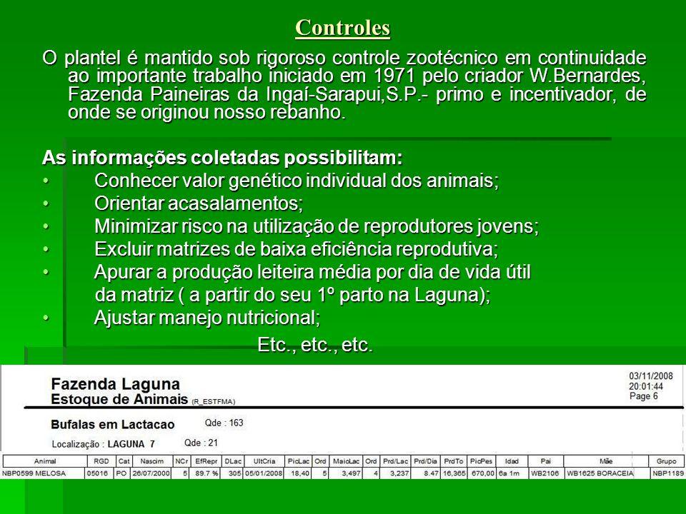 Controles Controles O plantel é mantido sob rigoroso controle zootécnico em continuidade ao importante trabalho iniciado em 1971 pelo criador W.Bernardes, Fazenda Paineiras da Ingaí-Sarapui,S.P.- primo e incentivador, de onde se originou nosso rebanho.