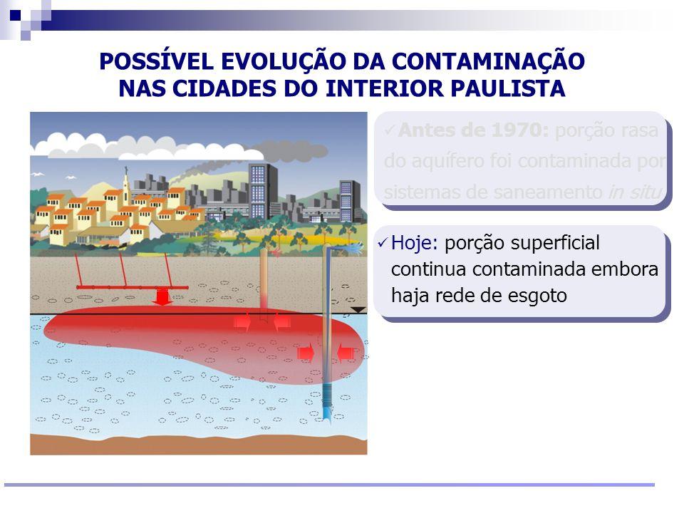 Reunião Conselho Científico de Pesquisa Ambiental Agosto/2009 Hoje: porção superficial continua contaminada embora haja rede de esgoto POSSÍVEL EVOLUÇ