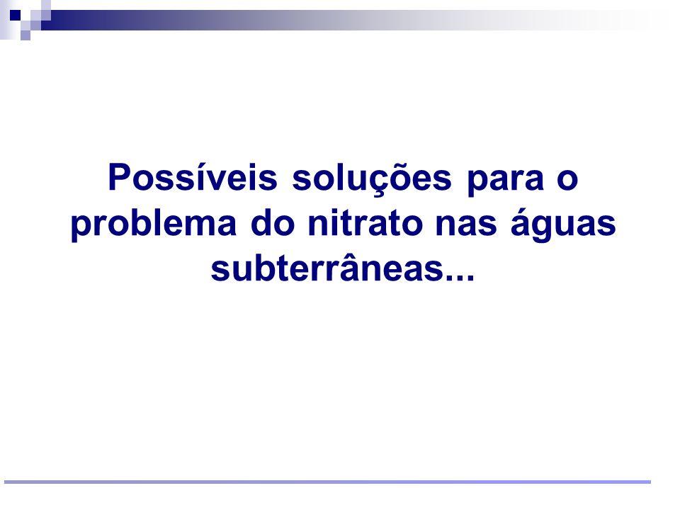 Reunião Conselho Científico de Pesquisa Ambiental Agosto/2009 Possíveis soluções para o problema do nitrato nas águas subterrâneas...