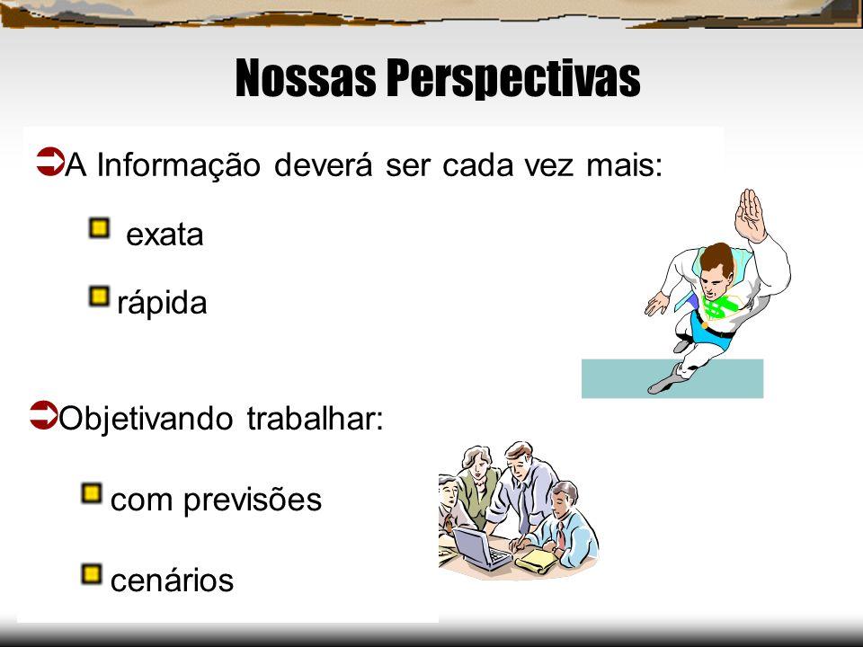 Nossas Perspectivas A Informação deverá ser cada vez mais: exata rápida Objetivando trabalhar: com previsões cenários