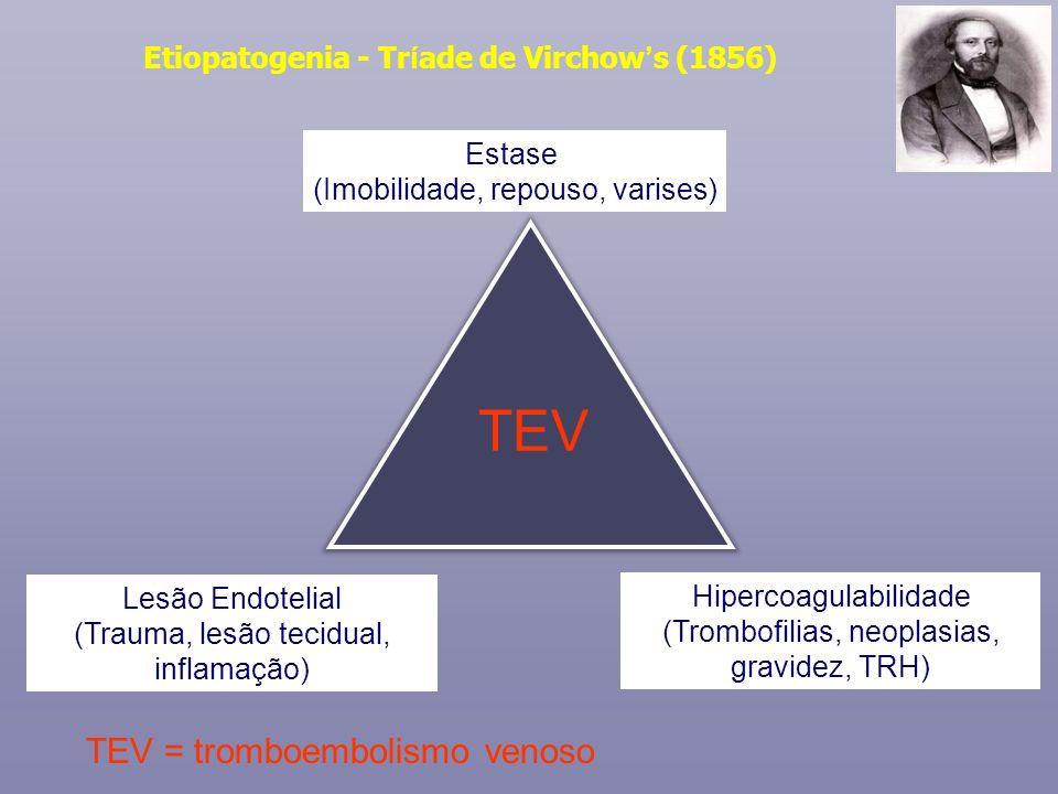 Estase (Imobilidade, repouso, varises) Hipercoagulabilidade (Trombofilias, neoplasias, gravidez, TRH) Lesão Endotelial (Trauma, lesão tecidual, inflam