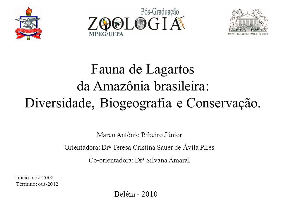 Fauna de Lagartos da Amazônia brasileira: Diversidade, Biogeografia e Conservação. Marco Antônio Ribeiro Júnior Orientadora: Dr a Teresa Cristina Saue