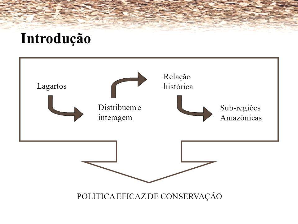 Introdução POLÍTICA EFICAZ DE CONSERVAÇÃO Lagartos Distribuem e interagem Relação histórica Sub-regiões Amazônicas