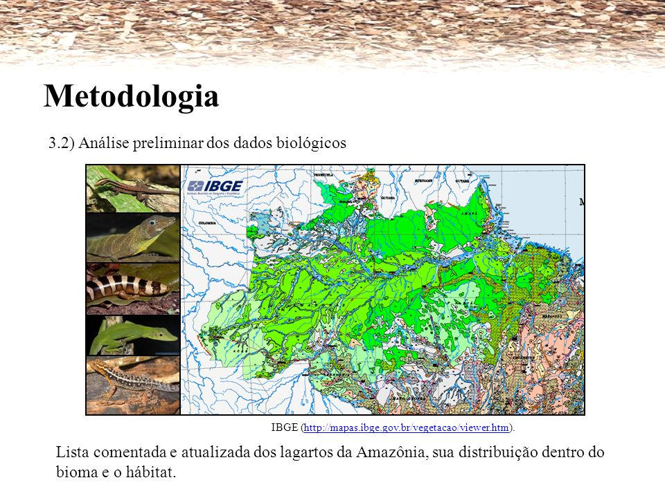 Metodologia 3.2) Análise preliminar dos dados biológicos IBGE (http://mapas.ibge.gov.br/vegetacao/viewer.htm).http://mapas.ibge.gov.br/vegetacao/viewe